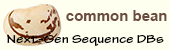 Common_bean logo